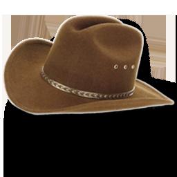 Hat cowboy brown icon